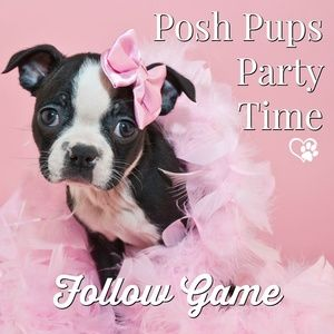 Please Share! 🐶 FOLLOW GAME: Posh Pups Party Time